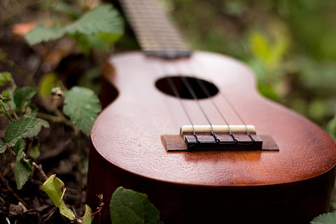 Best Toy Ukulele for Kids to Get Them Musically Inclined