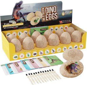 Eggs Dig Kit
